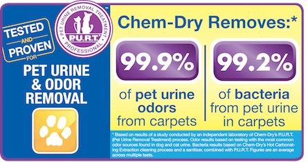 Pet Urine and Odor Removal Treatment statistics, service offered by Chem-Dry Kishwaukee
